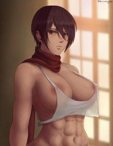 Mikasa's Big Tits